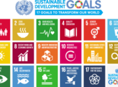 english_SDG_17goals_poster_all_languages_with_UN_emblem_1-620x384-300x186